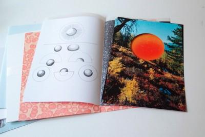 artistbooks Switzerland Palatti Nicolas Novali