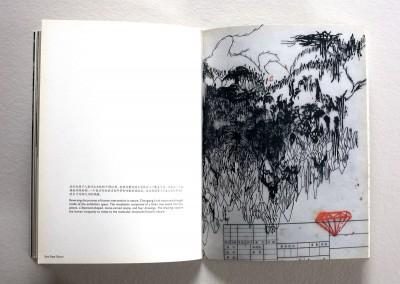 publication_chongqing_sara pape garcia