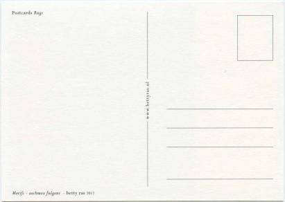 scan_postcards_rugs_motif_aechmea_fulgens_back_900