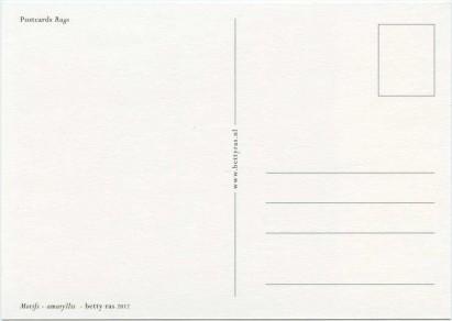 scan_postcards_rugs_motifs_amaryllis_back_900